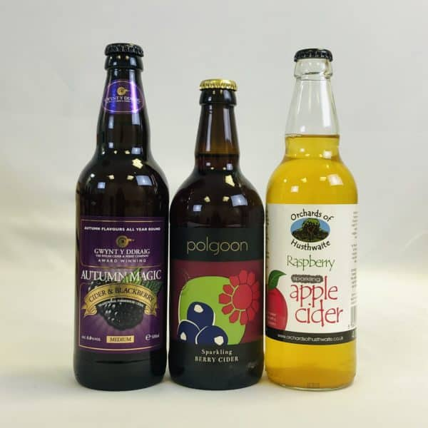 Ciderlicious - Gift of 15 Fruit Ciders - Selection 2 2