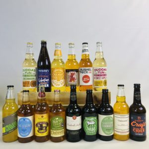 15 Mixed Case - Selection 1